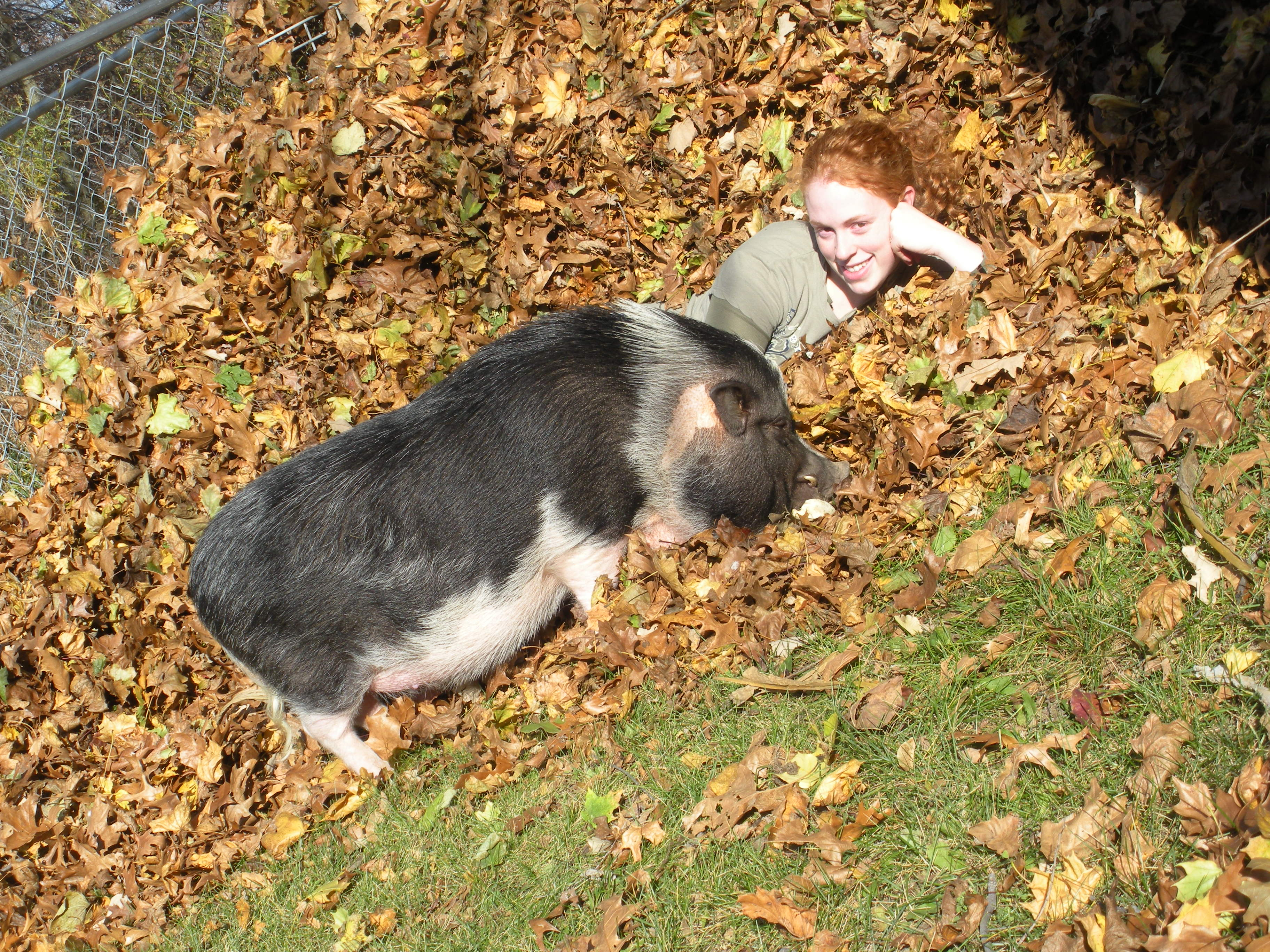 Rosco and Mom playing in the leaves.