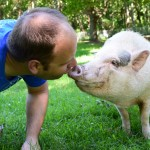 Piggy Sue loves Willie. She actually prefers him over Leslie.